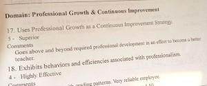 Professional Growth and Continuous Development